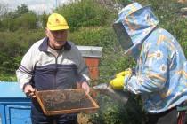 Пчеларството е дейност, която подслажда живота