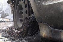 Огнена седмица за  гори и автомобили