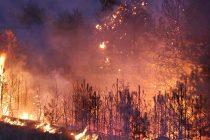 Заради пожар е обявено бедствено положение в селата Българска поляна и Орлов дол