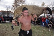Кочът от борбите в Свирково отиде у Георги Ванчев от с. Родопи
