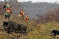 """По-добър ловен  сезон отчитат авджиите от """"Сокол"""""""