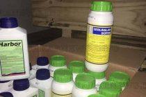 Митничари откриха  контрабандни препарати  за растителна защита