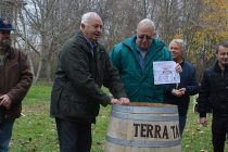Пловдивчанин взе наградата за най-добър винар в Харманли